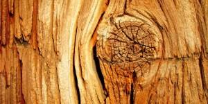 drewno-konstrukcyjne01